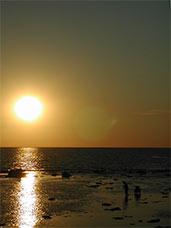 sunsetjouney