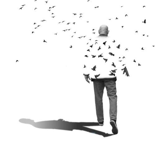 feeling-freedom